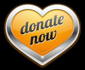 donate, now, ngo